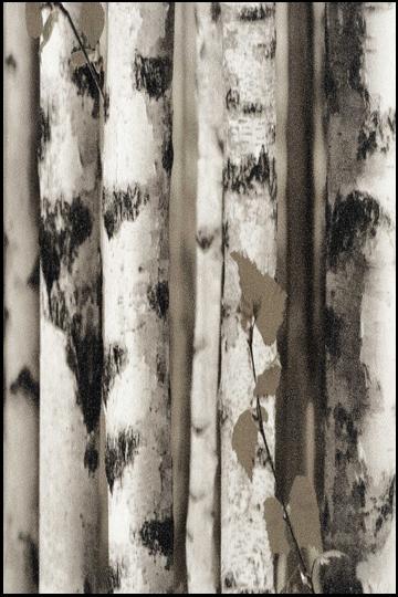 wallpaper-objet-34