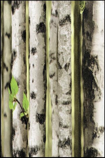 wallpaper-objet-35